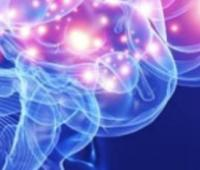 Alzheimer's Disease: Neural Stem Cell Therapy using 3x-Tg Mice